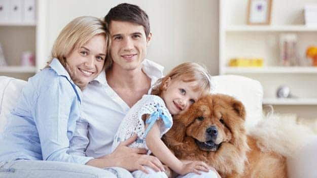 Wills & Trusts dog-young-family Direct Wills Essex